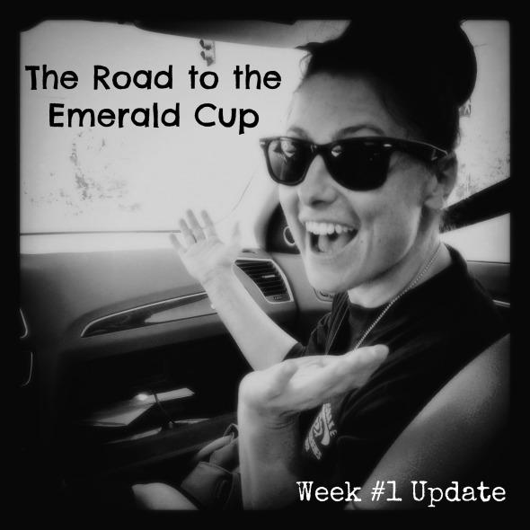Emerald Cup Week 1 Update
