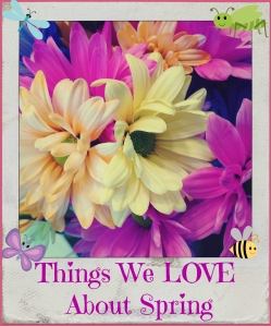 Things we love about spring